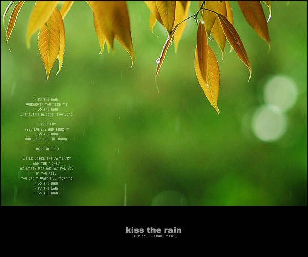 kiss the rain pic. from web